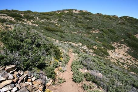 cedar-springs-trail-1341470 hike
